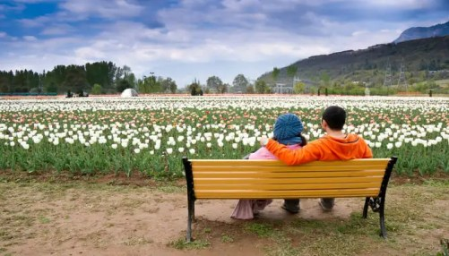 Srinagar Honeymoon: A Guide To Have A Dreamy Experience In 2021!