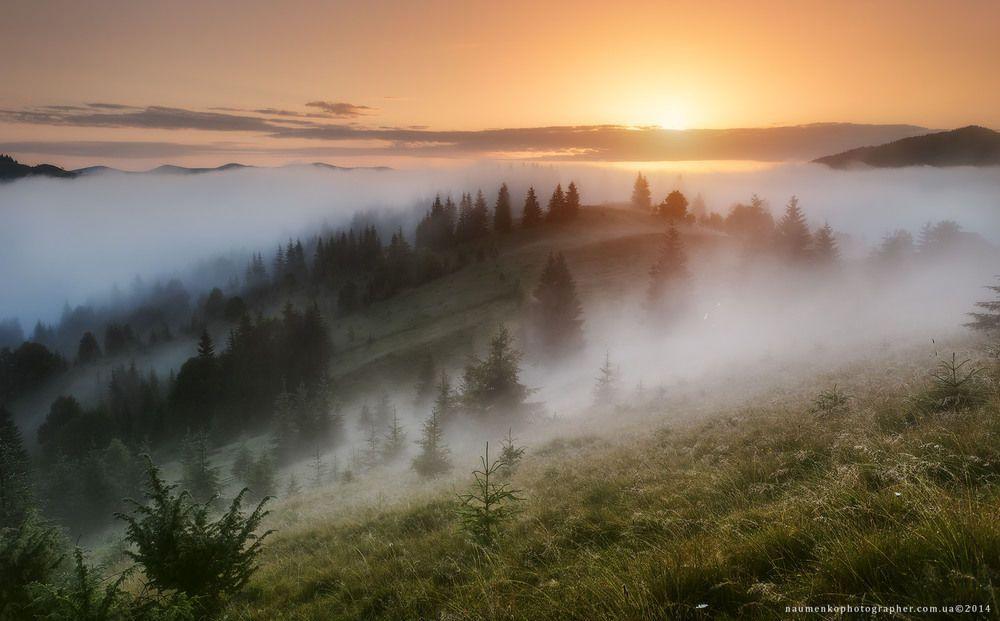 Гора Вухатий камінь, Карпати