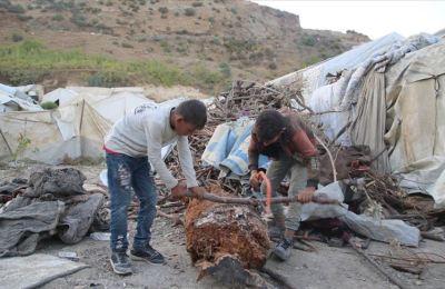 Kardeşlerinin okuması için kendini feda eden küçük Ahmet, odun kırarak ailesini geçindiriyor