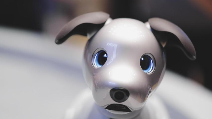 Sony's adorable new Aibo comes to the US