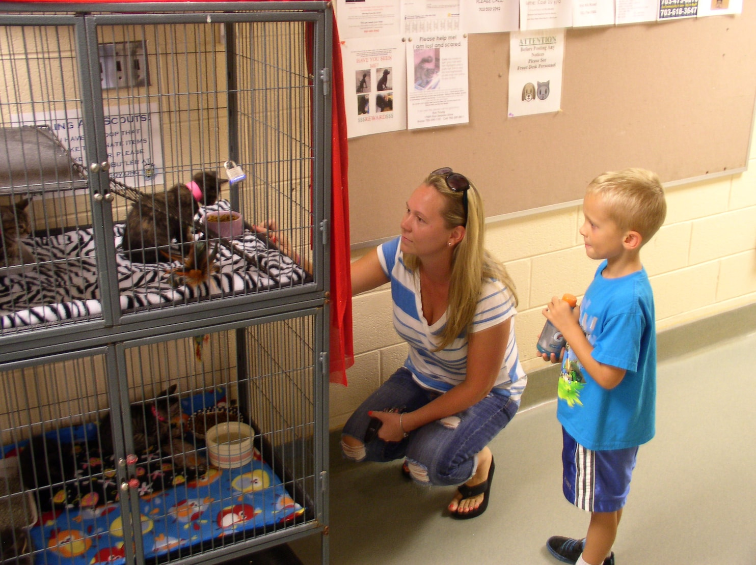 kids at pet shelter