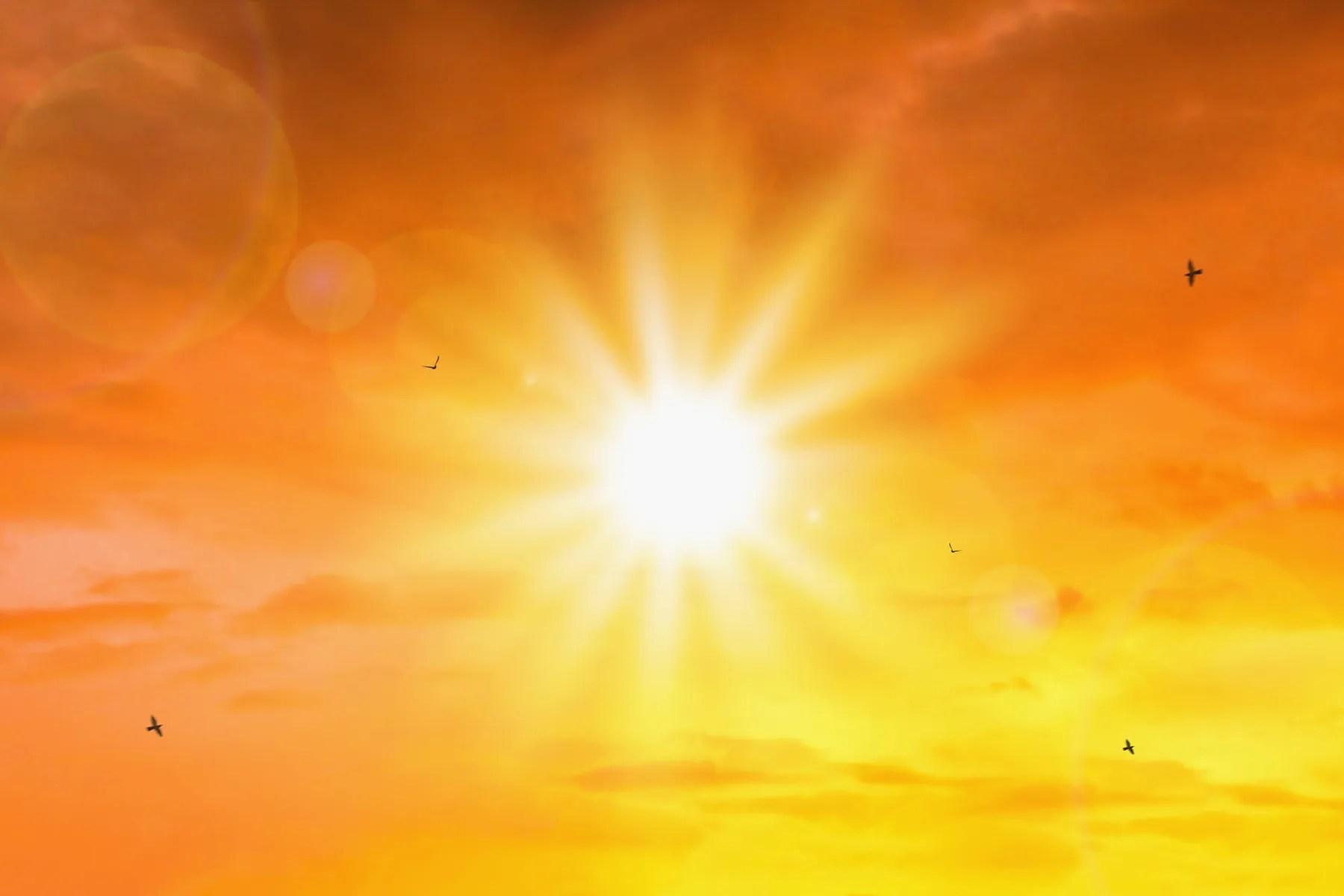في مواجهة الحرارة القاتلة ، تستخدم ERs أكياس الجسم لإنقاذ الأرواح