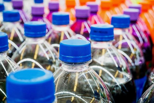 rows of soda