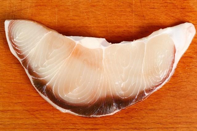 shark filet