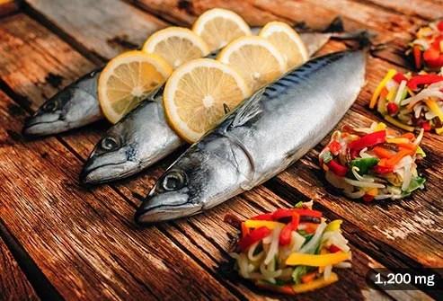 atlantic_mackerel