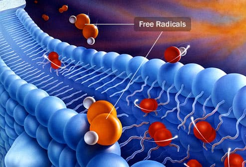 free radicals illustration