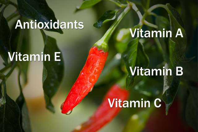 vitamins peppers