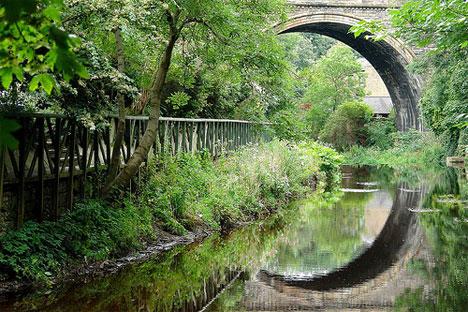 reflection and symmetry bridge