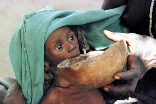 Welternährungs-Gipfel: 800 Millionen Menschen hungern