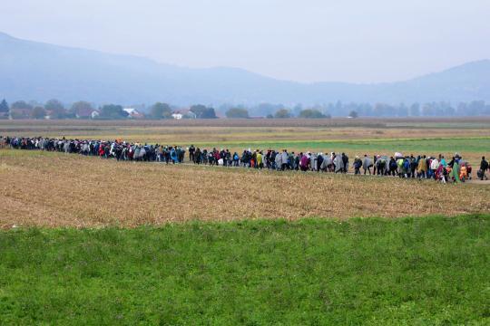 Tausende Flüchtlinge kommen in Slowenien an, hier in Rigonce auf dem Weg zu einem Flüchtlingscamp, und überfordern die Ressourcen des kleinen Zwei-Millionen-Einwohner-Landes