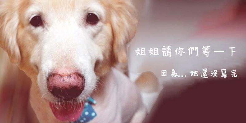 隱適美牙醫推薦|台北隱適美權威 羅士傑醫師 嶺先牙醫診所