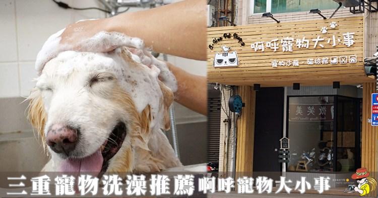 三重寵物美容推薦 A-Hoo Pet Shop 啊呼寵物大小事 寵物美容-貓旅館 用心推薦