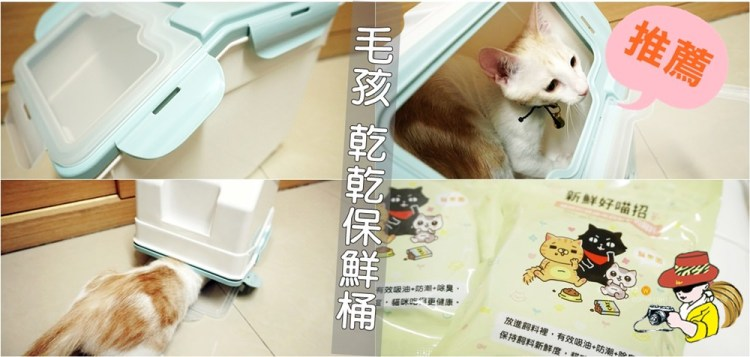 飼料保鮮桶推薦|貓樂園飼料保鮮桶 乾燥劑 飼料活性碳 神奇新鮮好喵招