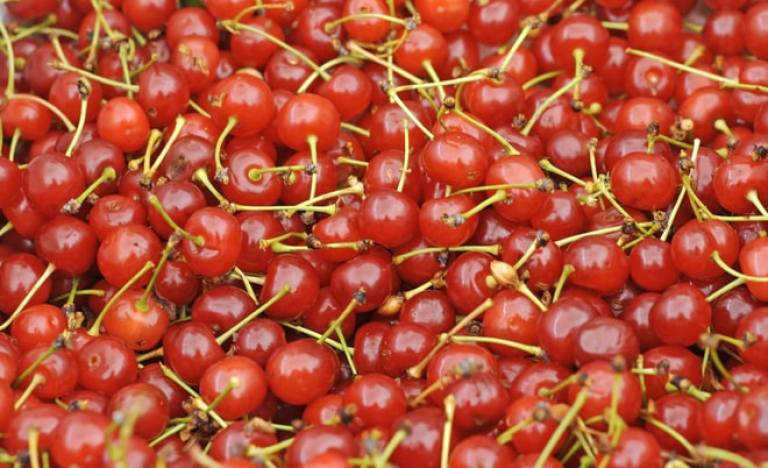 Tart Cherry Wine