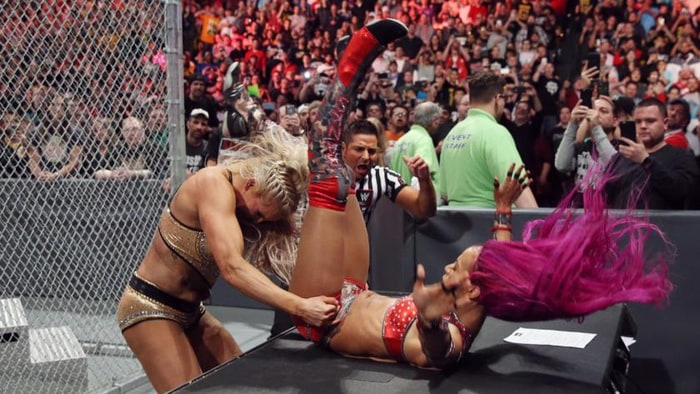 Image result for charlotte sasha hell in a cell