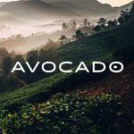 avocado green mattress 2 coupon codes