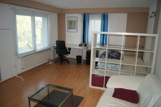Wohnungen Nagold : 1-Zimmer-Wohnungen Angebote in Nagold