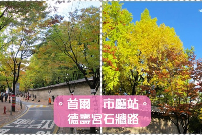 首爾景點∥ 市廳站 德壽宮石牆路-銀杏轉黃的季節&行道樹穿衣服