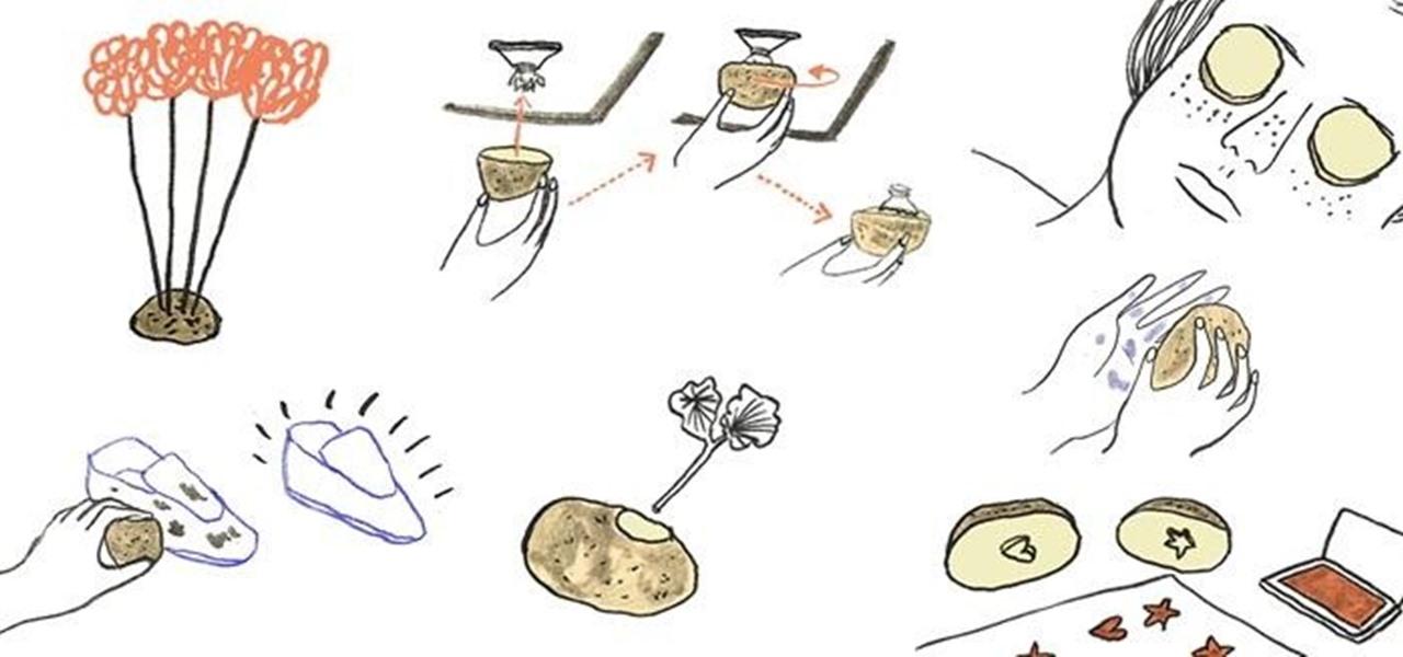Removing Broken Light Bulb Potato