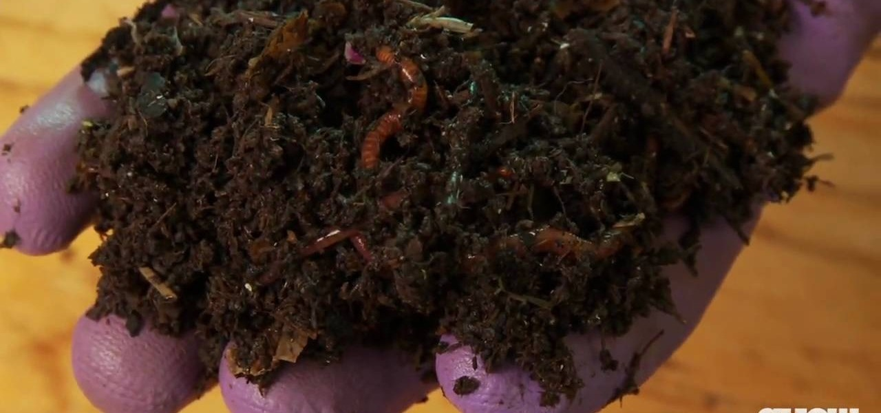 How To Make Your Own Worm Compost Out Of Kitchen Waste Eco Friendly WonderHowTo