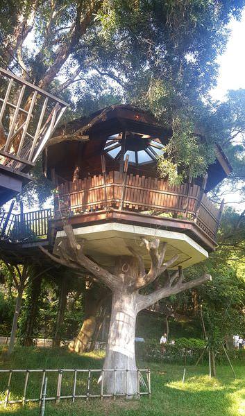 【奧爾森林學堂】桃園一日遊 熱門打卡景點之虎頭山公園 免費童話樹屋 親子旅遊最佳景點