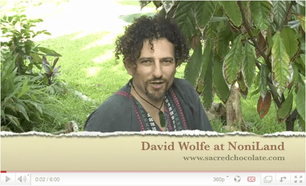 Noni Land Sacred Chocolate