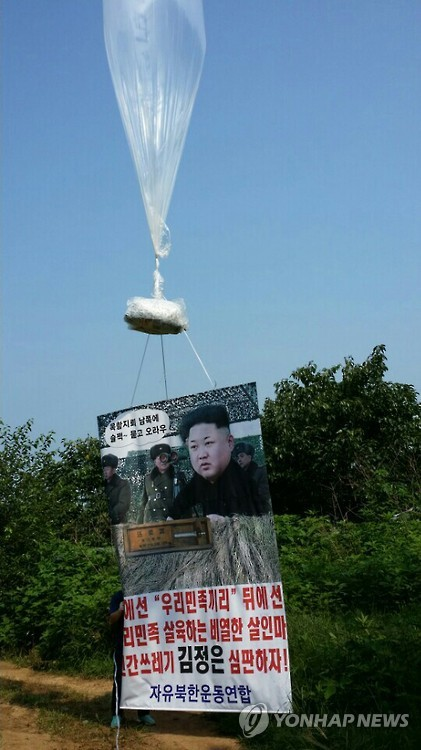 Anti-Pyongyang group flies leaflets to N. Korea