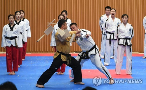Taekwondo demonstrators of two Koreas