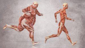 Benefits of a Healthy BMI