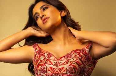 Nabha Natesh Recent Photo Shoot Pics