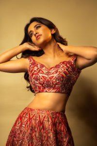Nabha Natesh Recent Photo Shoot Pics3