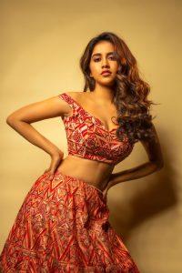 Nabha Natesh Recent Photo Shoot Pics4