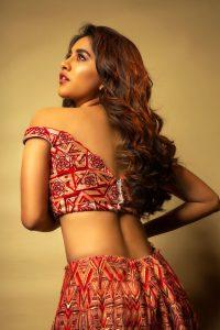 Nabha Natesh Recent Photo Shoot Pics5