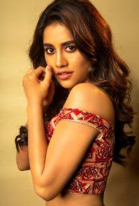 Nabha Natesh Recent Photo Shoot Pics6