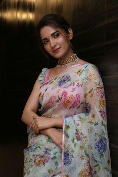 Ruhani Sharma Hot In Saree2