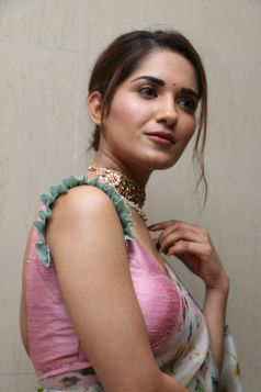 Ruhani Sharma Hot In Saree7