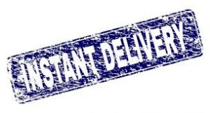 How Instant Delivery helps people with a busy schedule?