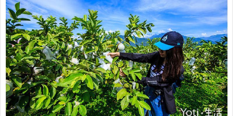 [花蓮富里] 樺勝美有機果園 | 採果體驗, 果園導覽, 防蚊膏 DIY 體驗