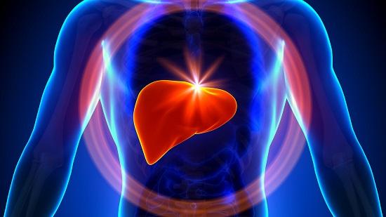 الفيروسات الكبدية أعراضها وأسبابها وطرق العلاج والوقاية