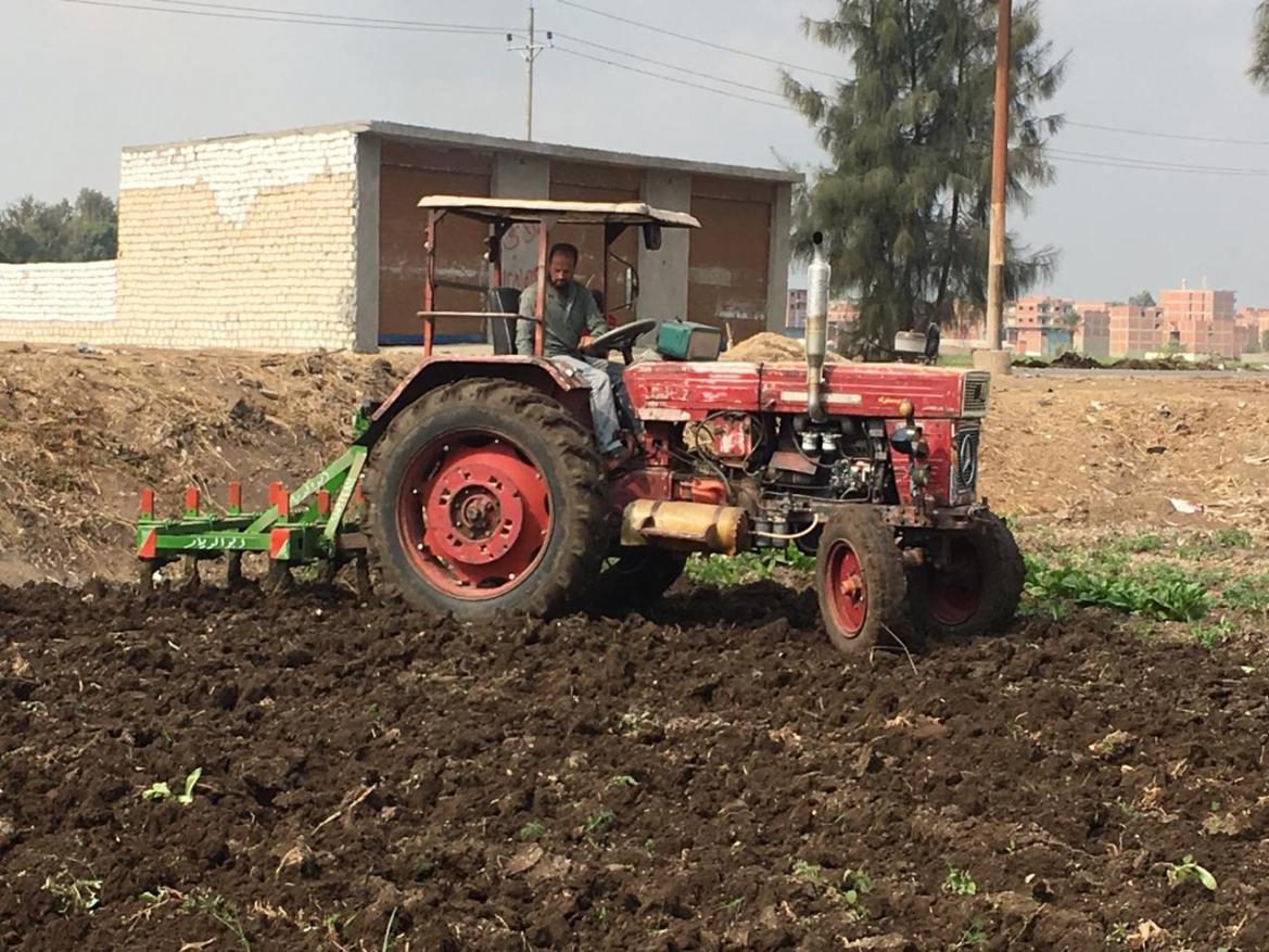 Opiniones de agricultores y agricultores en Ahli partido (7)