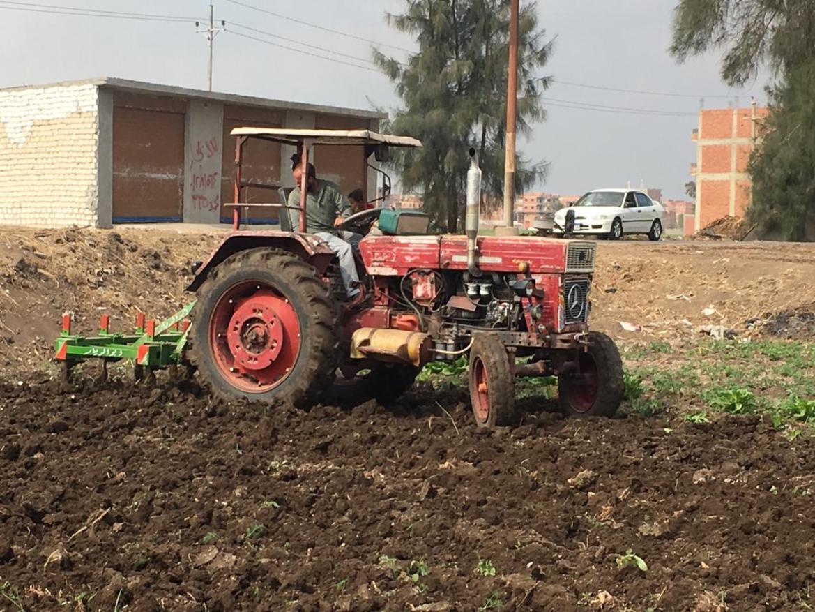 Las opiniones de agricultores y agricultores en Ahli coinciden (6)
