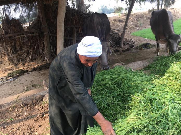 Opiniones de agricultores y campesinos en el juego Ahly (8)