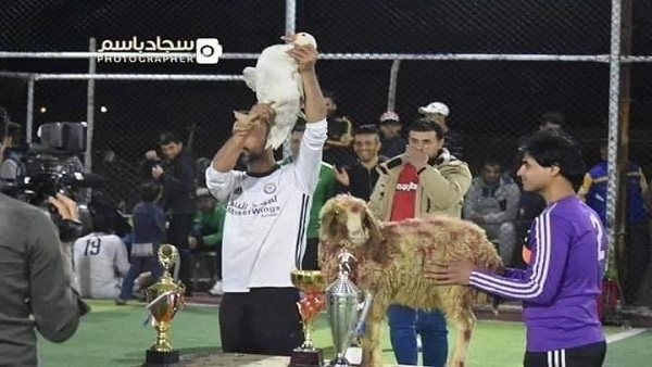 خروف وبطة جوائز الكرة في العراق