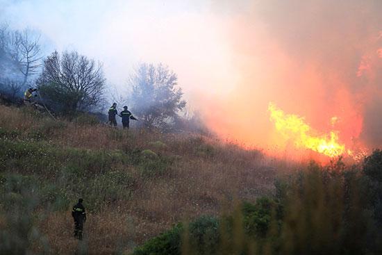 ألسنة النيران المرتفعة فى غابات إيفيا