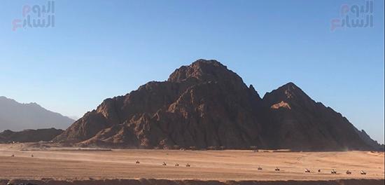 بشاهدون-جمال-الصحراء