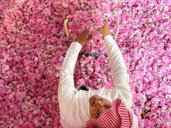 The city of roses in Saudi Arabia turns into a rosy plate that blossoms during Ramadan (8)