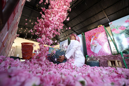 The city of roses in Saudi Arabia turns into a rosy plate that blossoms during Ramadan (2)
