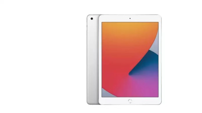 iPad (8th generation)