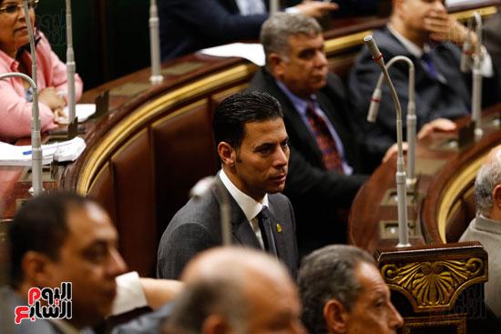 الجلسة العاملة لمجلس النواب (4)