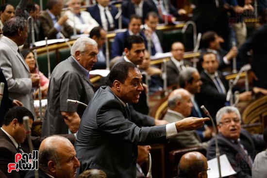 الجلسة العاملة لمجلس النواب (12)